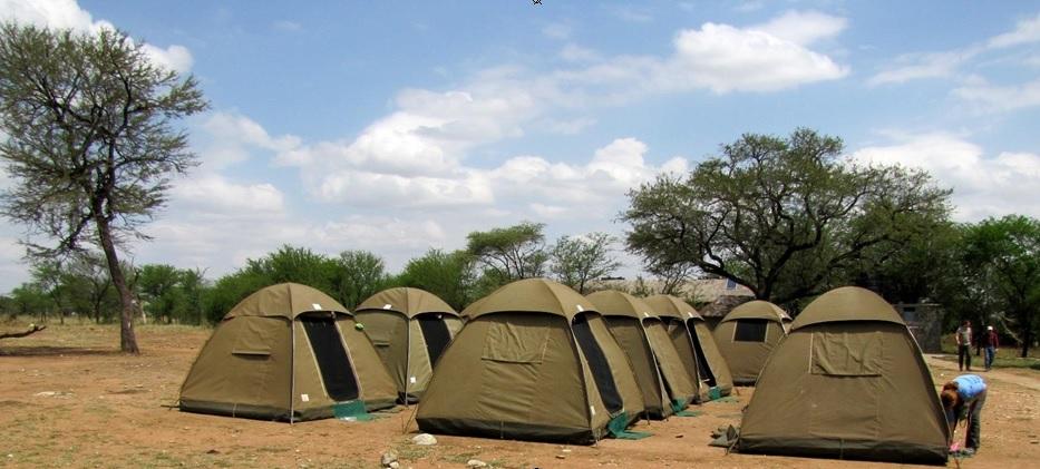 camp-safari-tanzania