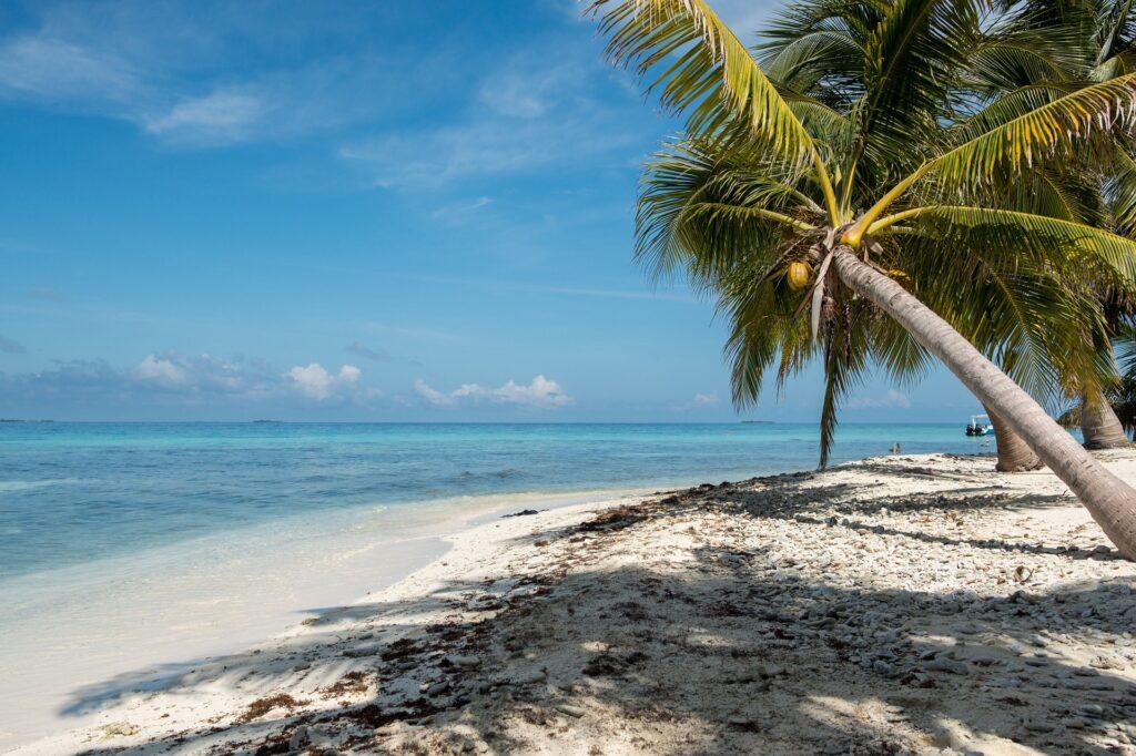 belize-karaiby-wybrzeze